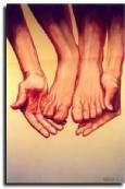 + DETALHES DA OBRA Mãos e pés